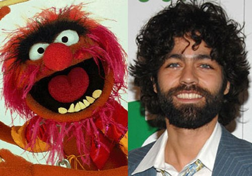 Celebrities That Look Like Muppets